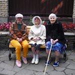 Три девицы....у клумбы!