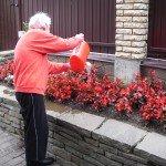 Трудотерапия-полив цветов!